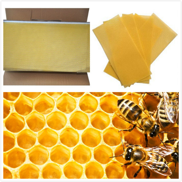 Honeycomb, Bee, Wax, Bee Wax, organic, natural, candles, diy