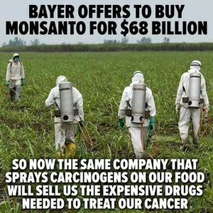 bayers offers to buy Monsanto by State of our world Pinterest