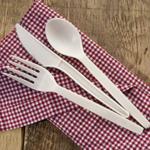 Plant Starch Fork-Case